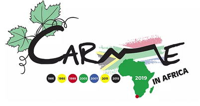 Conference: CARME 2019